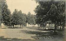 Michigan, MI, Burr Oak, Looking Across the Park Real Photo Postcard
