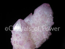 RARE STARBRARY RASPBERRY/ROSE/PINK AURA SPIRIT CACTUS QUARTZ CRYSTAL POINT!