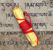 "Most Powerful "" Ruel "" Holy Tibetan Gyuto Monastery Protective Amulet Talismans"