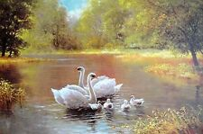 Wonderful Oil painting happy family birds swan on the lake in landscape canvas