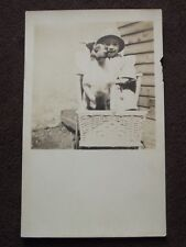 YOUNG BOY WITH HIS TERRIER DOG SITTING IN BABY CARRIAGE VTG REAL PHOTO POSTCARD