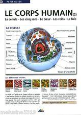 """Livre Fascicule Petit Guide Le Corps Humain """" ( No 55 Plac ) Book"""