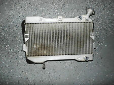 Suzuki LTR450 LTR 450 Radiator Rad Cooler Engine Motor
