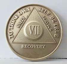 Alcoholic 7 Year Recovery 7 Yr Chip Medallion Coin Medal Token  AA Anonymous