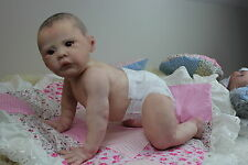 REBORN BABY CRAWLING TODDLER LILLI MARLAINE  BY VAHNI GOWING