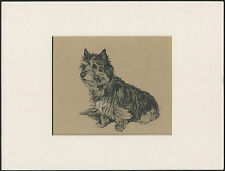 CAIRN TERRIER CHARMING IMAGE OLD 1930'S CECIL ALDIN DOG ART PRINT READY MOUNTED