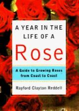 A Year in the Life of a Rose : A Guide to Growing Roses from Coast to Coast...