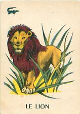 ANCIENNE IMAGE OLD CARD LOWE LION PANTHERA LEO AFRIQUE AFRICA AFRICA