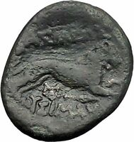 LYSIMACHOS King of Thrace 323BC Alexander the Great Lion Greek Coin  i49219