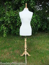 Female Dressmaking MANNEQUIN TAILORS Dummy Size 8 Dressmakers Bust Model NEW