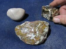 New listing Wyoming Rocks!, ( The Jurassic Package )
