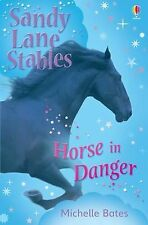 Horse in Danger (Sandy Lane Stables), Bates, Michelle