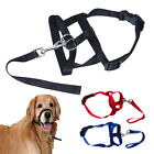 Soft Dog Pet Head Collar Gentle Halter Leash Leader No Pull for Training Dogs