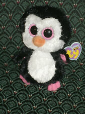 "Ty Beanie Boo 6""  PADDLES (Penguin - solid pink eyes) * MWMT * RARE *RETIRED*"