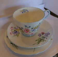 Vintage English Shelley Trio Wild Flowers Cup & Saucer & Plate R 13668 Blue Trim