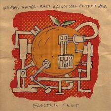 Electric Fruit by Weasel Walter/Peter Evans (Trumpet)/Mary Halvorson (CD,...
