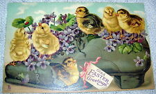 Vintage Chicks with Violets on Shoe Easter Greetings Embossed TUCK Postcard