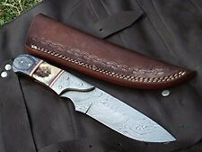 DKC-715 SWAGGER Stag Horn Hunting Handmade Knife Fixed Blade 8.5 oz 9  Long 4  B
