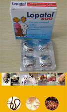 4 Tablets Panacur Canine Dewormer Oral Wormer Roundworm Tapeworm Worms Dogs  7kg