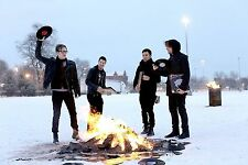 "Fall Out Boy Posters Singer Hot Art Silk Poster Prints 12x18"" BILLB50"