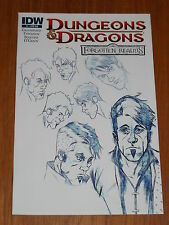 DUNGEONS & DRAGONS FORGOTTEN REALMS #1 IDW VARIANT NM (9.4)