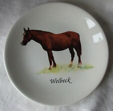 Weatherby Ware Royal Falcon Pottery Plate - WELBECK, REDWINGS HORSE SANCTUARY