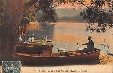 BR78330 lyon le parc de la tete d or les cygnes swan   france