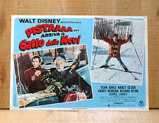 PISTA GATTO ARRIVA IL GATTO DELLE NEVI fotobusta poster Ski Sci Snowball Express