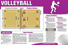 VOLLEYBALL INSTRUCTIONAL WALL CHART Poster - Rules, Positions, Court, etc.
