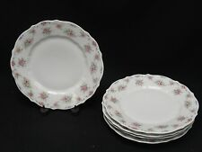 5x ANTIQUE C TIELSCH & Co CT ALTWASSER SILESIA ENCHANTING FLORAL PLATE c. 1887