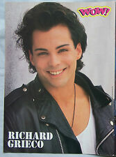 Richard Grieco  TEEN IDOL POSTER PIN-UP Michael Pare   6789134