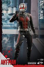 """Ant Man Paul Rudd Scott Lang 1/6 Marvel MMS308 12"""" Figur Hot Toys"""