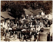 Photo Skeen & Co - Ceylon - Procession d'Elephants - India - Albumine - 1880 -