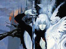 Castlevania Aria of sorrow Wall Poster -22 in x 34 in - Fast shipping