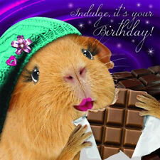 Funny Guinea Pig Lady Birthday Card Chocoholic, Chocolate Bar Gift Greeting Card