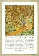 1966 Magazine Ad - Sinclair Oil - How to Keep a Forest from Becoming Neon Jungle
