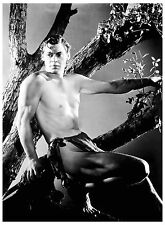 PHOTO JOHNNY  WEISSMULLER - 11X15 CM #1B