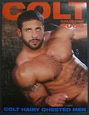2006 COLT HAIRY CHESTED MEN CALENDAR GAY EROTICA COLOR PHOTOGRAPHY NAKED GUYS