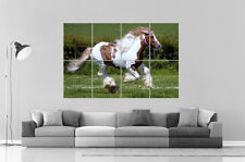 MAGNIFIQUE CHEVAL BEAUTIFUL HORSE  Wall Art Poster Grand format A0 Large Print