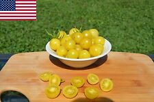Lemon Drop Organic Tomato Seeds- Rare Yellow Cherry Heirloom-  50+ 2016 Seeds