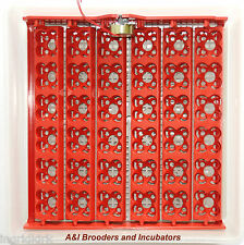 AUTOMATIC 144 Eggs Quail Turner Tray with 110Volt PCB motor NEW (Not Incubator )