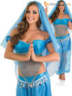 Ladies Arabian Princess Costume Adult Jasmine Fancy Dress Belly Dancer Bollywood