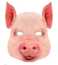 Pig Animal 2D Card Party Face Mask Fancy Dress Up Farm Theme