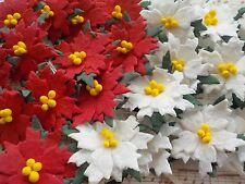 200! Red & White Mulberry Poinsettias - Save 16% - Christmas Poinsettia Flowers!