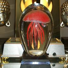 "Red Jellyfish Paperweight Glow in the Dark 4.5""  Plus White Light LED BASE"
