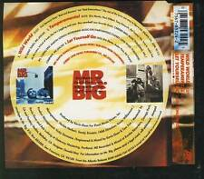 MR BIG Wild World 3 TRACK CD SINGLE ATLANTIC GERMANY