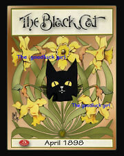 April 1898 DAFFODILS The Black Cat Magazine cover 8x10 Vintage animal Art print