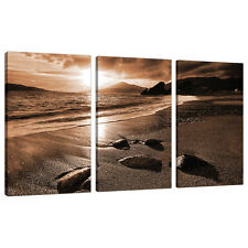 3 Part Brown Sepia Canvas Pictures Wall Art Living Room Prints 3076