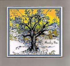 The Wayne Hoskins Band - Breaking Here = CD NEW