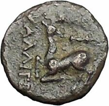 Ephesus in Ionia 200BC Bee Stag Genuine Authentic Ancient Greek Coin i48886